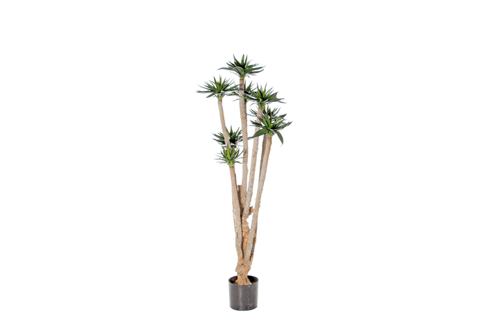 Plante artificielle agave Do it + Garden 658960000001 Colore Verde Taglio L: 30.0 cm x L: 30.0 cm x A: 60.0 cm N. figura 1
