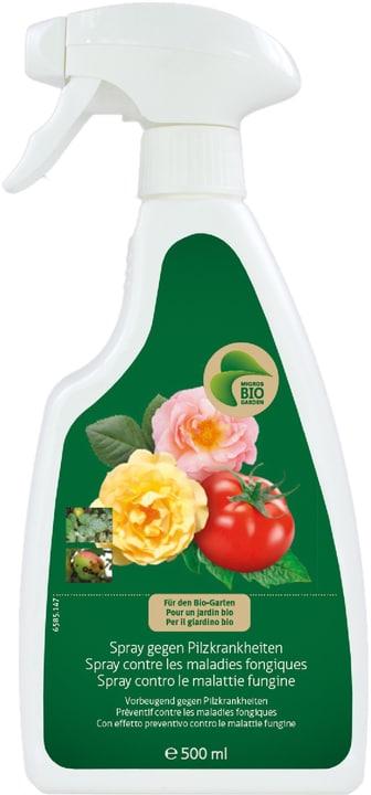 Spray gegen Pilzkrankheiten, 500 ml Migros-Bio Garden 658514700000 Bild Nr. 1