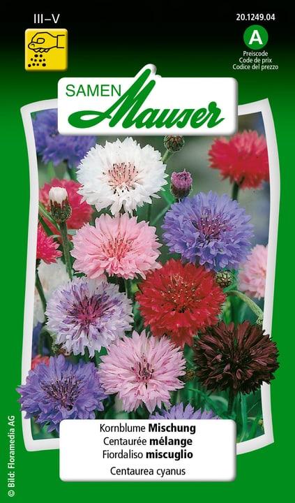 Fiordaliso miscuglio Semente Samen Mauser 650102102000 Contenuto 1 g (ca. 100 piante o 3 - 4 m²) N. figura 1