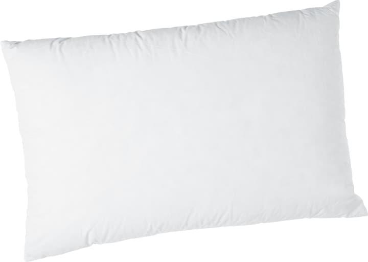 SWISS FEATHERS Cuscino 451757910910 Colore Bianco Dimensioni L: 100.0 cm x A: 65.0 cm N. figura 1