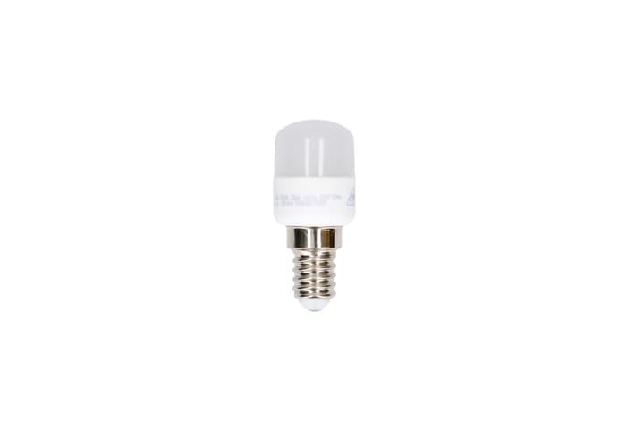 Lampadina LED E14 2.5W Max Hauri 612525000000 N. figura 1