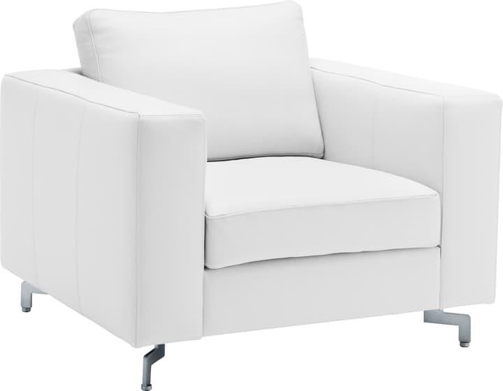 DIENER Sessel 402470700000 Grösse B: 97.0 cm x T: 92.0 cm x H: 80.0 cm Farbe Ecru Bild Nr. 1