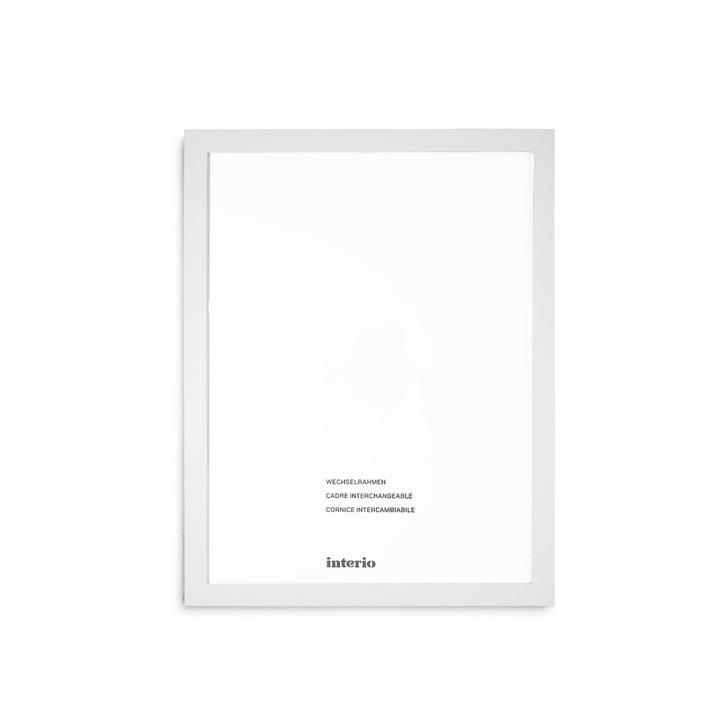 QUADROLINO Cadre interchangeable 384006800000 Dimensions images 40 x 50 Couleur Blanc Photo no. 1