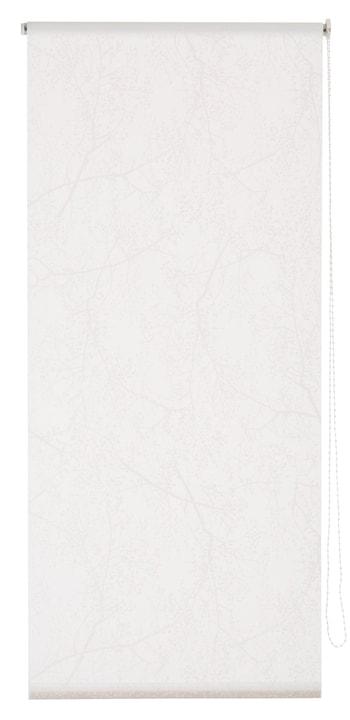 SPRING Store enrouleur 430746710210 Couleur Blanc Dimensions L: 102.0 cm x H: 185.0 cm Photo no. 1