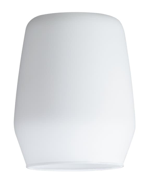 DECOSYSTEMS VENTO Vetro decorativo per lampada singolo Paulmann 615014400000 N. figura 1