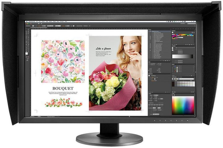 "ColorEdge CG2730 27"" Monitor EIZO 785300131738 Bild Nr. 1"