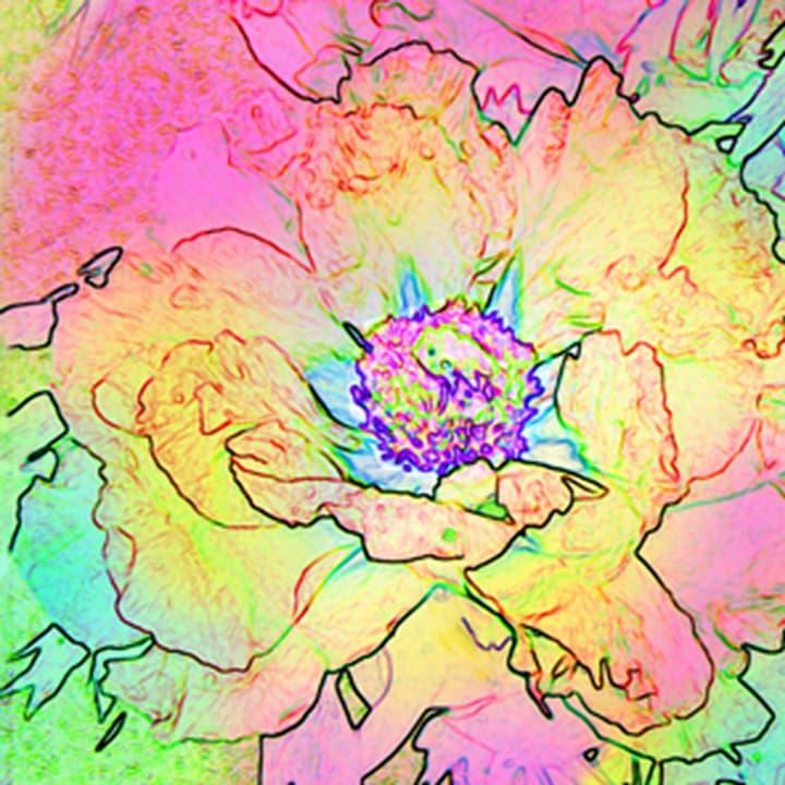 Avantgarde Serviette Saison, 20 Stk. 33x33 cm, Flower Spirit Feldner + Partner 665744700000 Bild Nr. 1