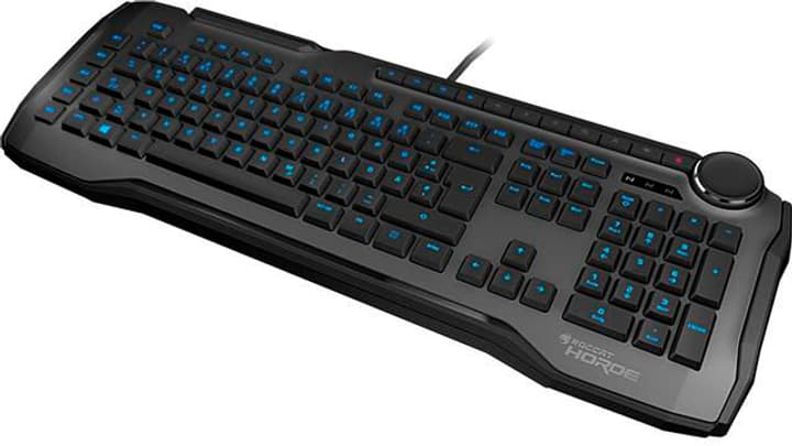Horde Clavier - gris ROCCAT 785300133307 Photo no. 1
