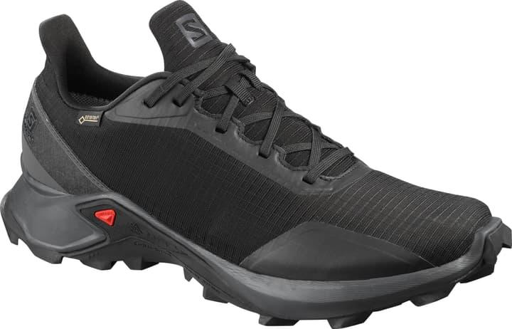 Alphacross GTX Herren-Multifunktionsschuh Salomon 461116542520 Farbe schwarz Grösse 42.5 Bild-Nr. 1