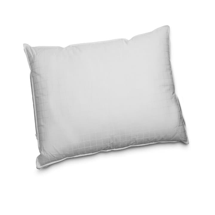 DREAM FIBRE ADJUSTABLE Cuscino sintetico di lusso 376044200000 Dimensioni L: 65.0 cm x L: 65.0 cm Colore Bianco N. figura 1