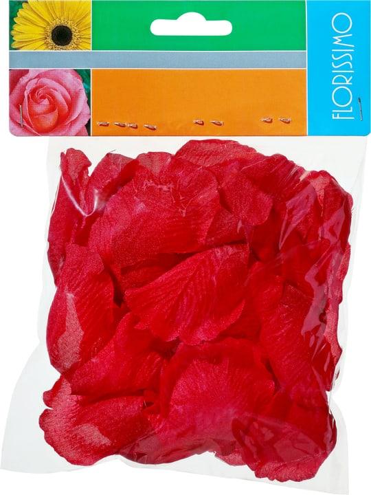 Foglie di rosa Do it + Garden 700020000235PIMSAM N. figura 1