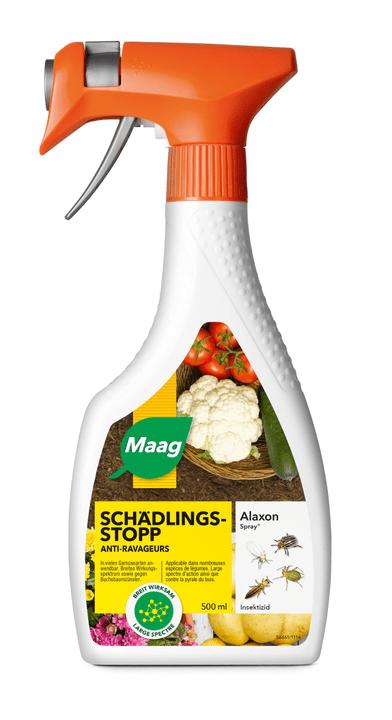 Alaxon Spray, 500 ml Maag 658410600000 Bild Nr. 1