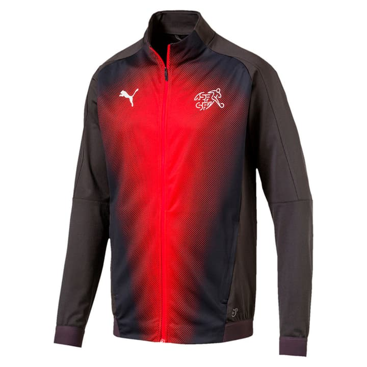 Suisse Stadium Jacket Veste de football aux couleurs de la Suisse Puma 498280500386 Couleur antracite Taille S Photo no. 1