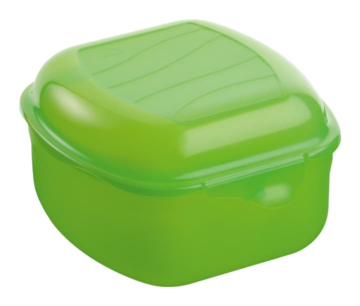 TAKE AWAY Boîtes 0.85L M-Topline 702935400060 Couleur Vert Dimensions L: 13.0 cm x H: 8.0 cm Photo no. 1