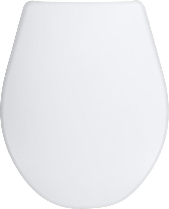 Asse per WC Prestige diaqua 675621000000 N. figura 1