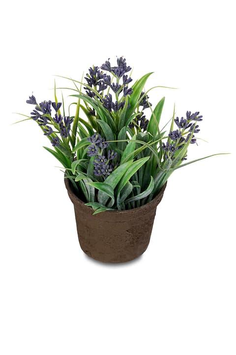 Fiore artificiale mini Do it + Garden 657098200008 Couleur Bleu Taille ø: 9.0 cm x H: 12.0 cm Photo no. 1