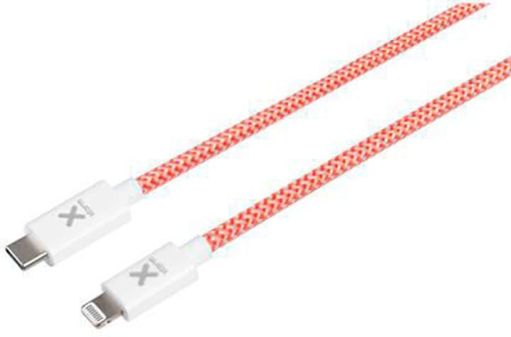 Câble Lightning ST -> USB-C ST 1.0m Câble Xtorm 785300148507 Photo no. 1