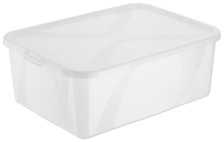 Arco Box 10L, transparent Rotho 603629900000 Grösse L: 36.5 cm x B: 26.5 cm x H: 14.0 cm Farbe Transparent Bild Nr. 1