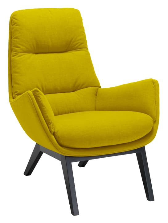 ANDRES Fauteuil 402441207049 Dimensions L: 83.0 cm x P: 87.0 cm x H: 96.0 cm Couleur limette Photo no. 1