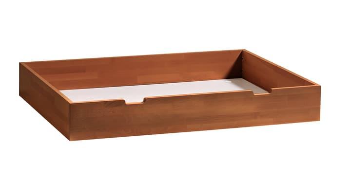 CONTI Tiroir de rangement HASENA 403178785204 Dimensions L: 120.0 cm x P: 89.0 cm x H: 18.0 cm Couleur Hêtre couleur cerisier Photo no. 1