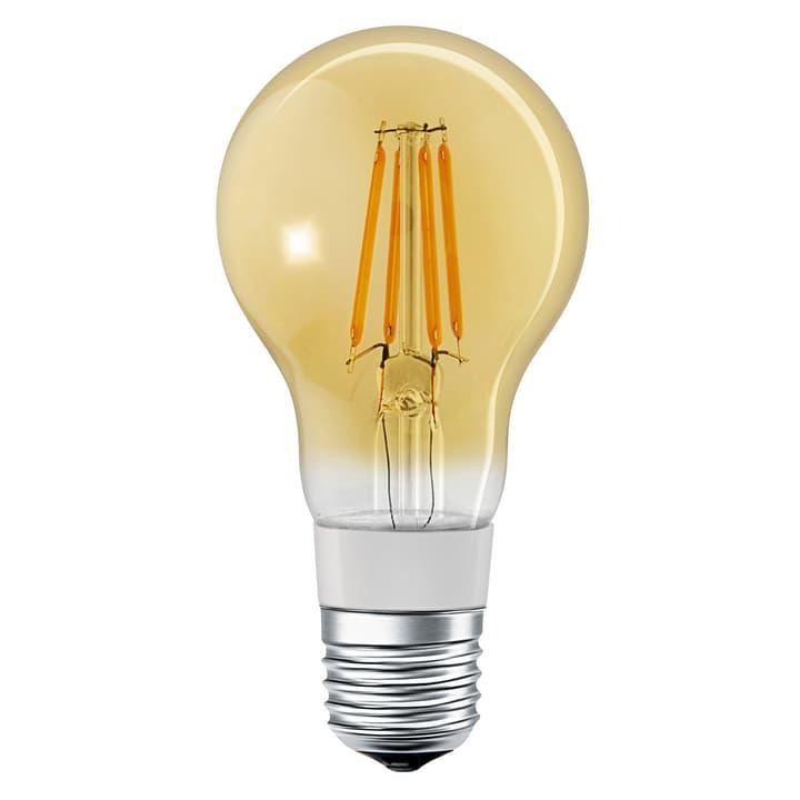 SMART+ CLASSIC A45 GOLD DIMMABLE E27 250 421072600000 N. figura 1