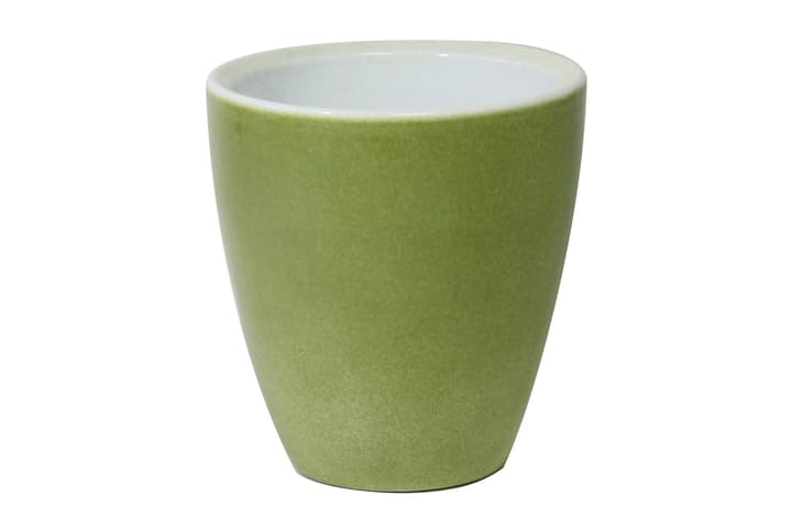 Pot orchidee vert 657557515312 Taille L: 12.0 cm x P: 12.0 cm x H: 15.0 cm Couleur Vert Photo no. 1