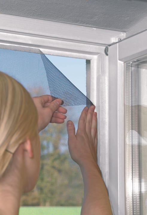 Fenster STANDARD Zanzariera Windhager 631262600000 N. figura 1