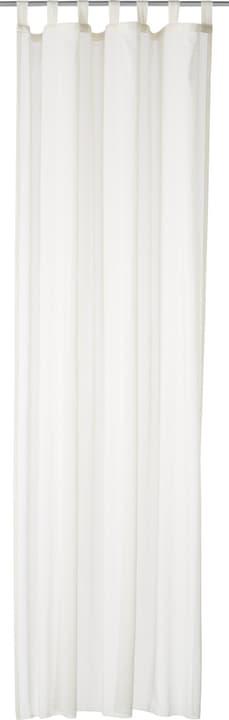 RITA Rideau prêt à poser jour 430273921810 Couleur Blanc Dimensions L: 150.0 cm x H: 260.0 cm Photo no. 1