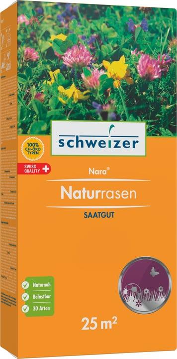 Nara Gazon naturel, 25 m2 Eric Schweizer 659293800000 Photo no. 1