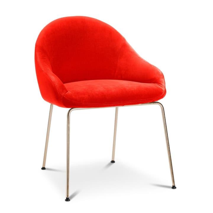 EARL Stuhl 366024292503 Grösse B: 58.0 cm x T: 65.0 cm x H: 76.0 cm Farbe Rot Bild Nr. 1