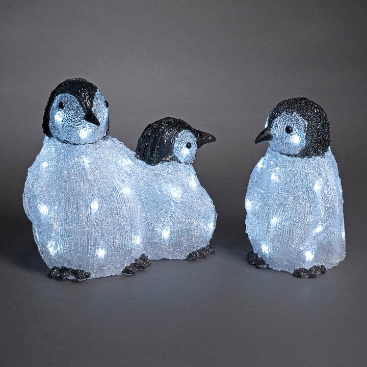 Famiglia di pinguini LED in acrilico, set da 3 Konstsmide 613194200000 N. figura 1