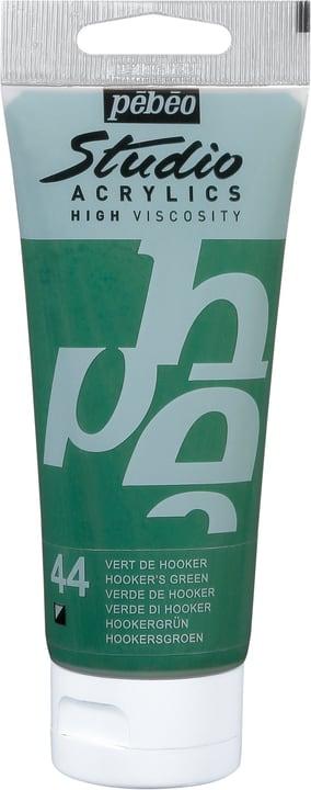 Pébéo Studio Acrylic Pebeo 663509831044 Colore Verde Hooker N. figura 1