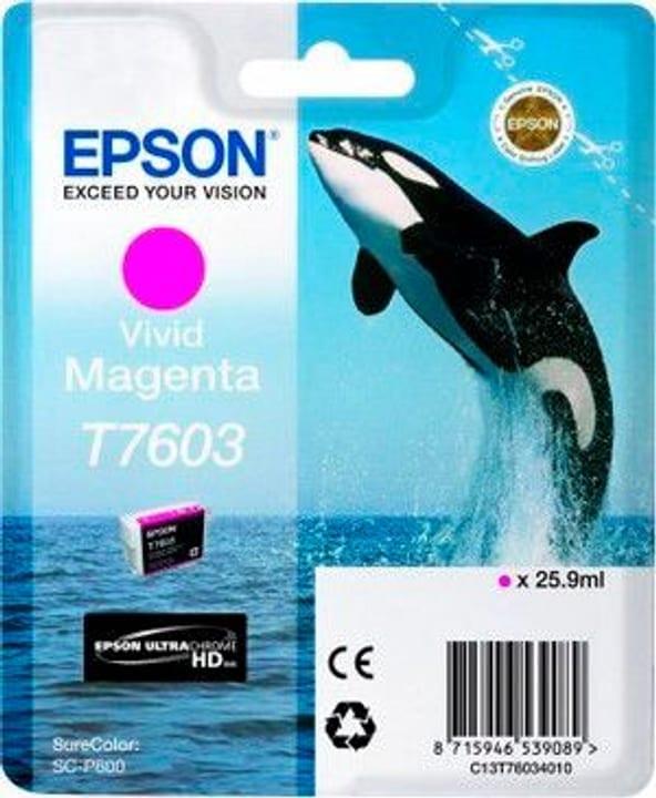 T7603 Tintenpatrone magenta Tintenpatrone Epson 798534800000 Bild Nr. 1