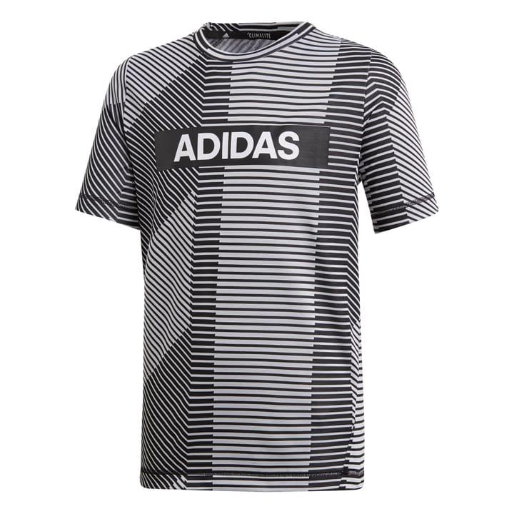 Branded T-Shirt Knaben-T-Shirt Adidas 464599012880 Farbe grau Grösse 128 Bild-Nr. 1