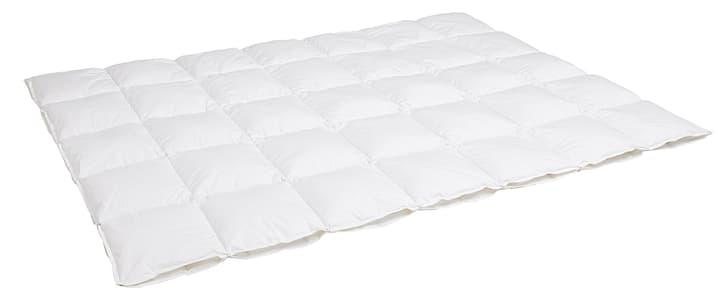 CLASSADAUN 4-SEASONS Duvet double 451755612310 Couleur Blanc Dimensions L: 160.0 cm x P: 210.0 cm Photo no. 1