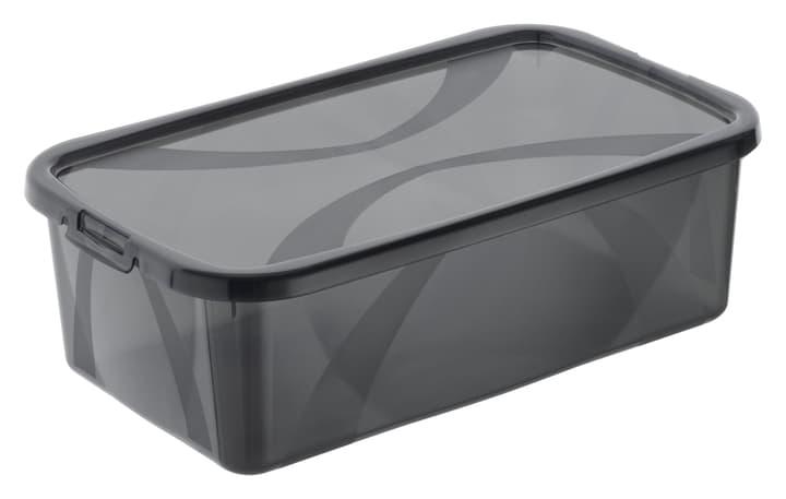 Arco Box 5L, grau Rotho 603629800000 Grösse L: 34.0 cm x B: 20.2 cm x H: 10.6 cm Farbe Grau Bild Nr. 1