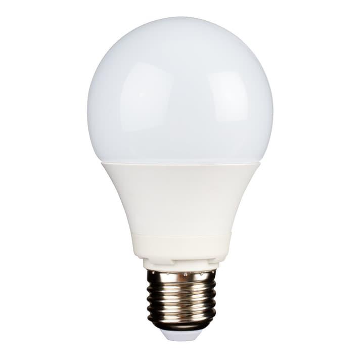LED A69 E27 9.5W 806 lm M-Classic 421036400000 N. figura 1