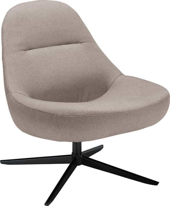 BOSCH Fauteuil 402464707086 Couleur Gris perle Dimensions L: 72.0 cm x P: 77.0 cm x H: 82.0 cm Photo no. 1