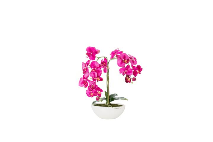 Orchidée artificielle beauty dans une coupe en céramique Do it + Garden 658956200000 N. figura 1