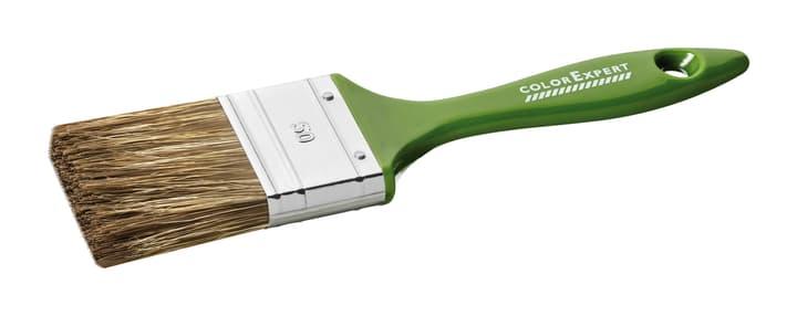 Lasur-Flachpinsel 6.St. 50mm Kunststoff-Stiel Color Expert 661911600000 Bild Nr. 1