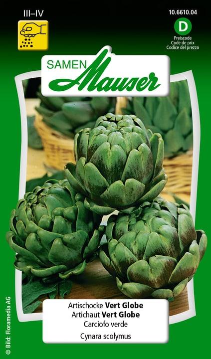 Carciofo verde Semente Samen Mauser 650108601000 Contenuto 2.5 g (ca. 30 piante o 10 m²) N. figura 1