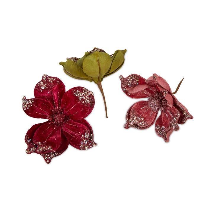 MIRIAM Blume auf Clip 390308200000 Bild Nr. 1