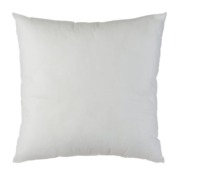 IVET Garnissage coussin 450682540210 Couleur Blanc Dimensions L: 40.0 cm x H: 40.0 cm Photo no. 1