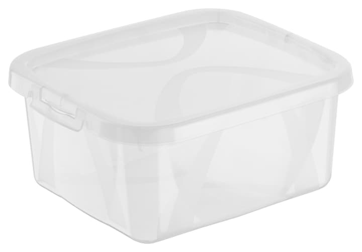 Arco Box 2L, transparent Rotho 603629500000 Taille L: 19.0 cm x L: 16.5 cm x H: 8.7 cm Couleur Transparent Photo no. 1