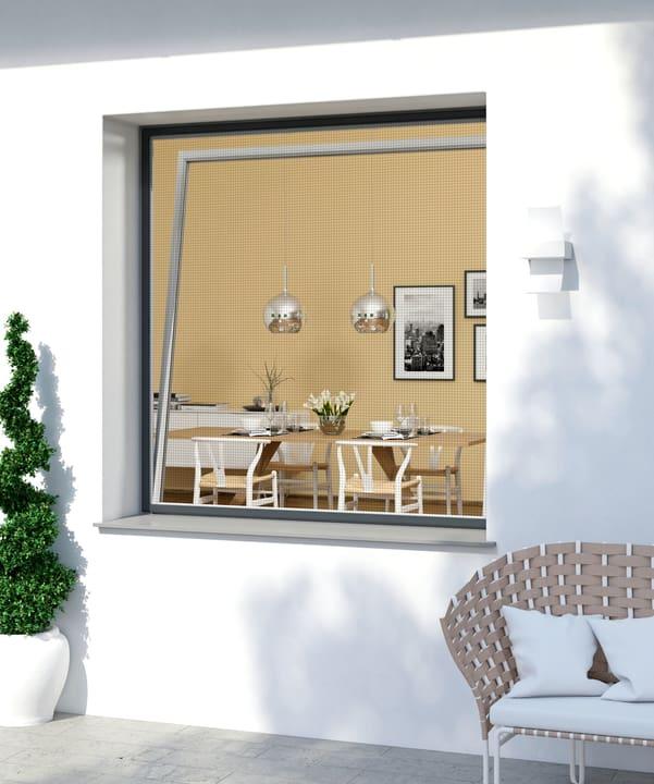 Fensterrahmen EXPERT Zanzariera Windhager 631266100000 N. figura 1