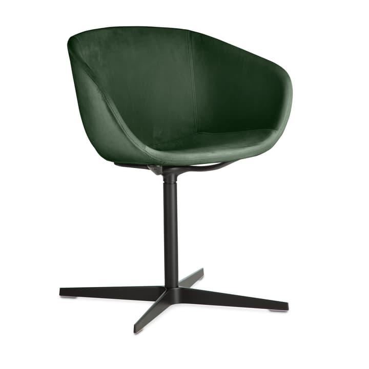SEDIA Stuhl mit Armlehne 366193600000 Bild Nr. 1