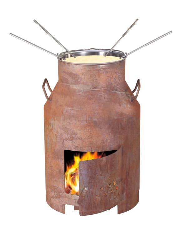 Fondue and four de grill 639017900000 Photo no. 1