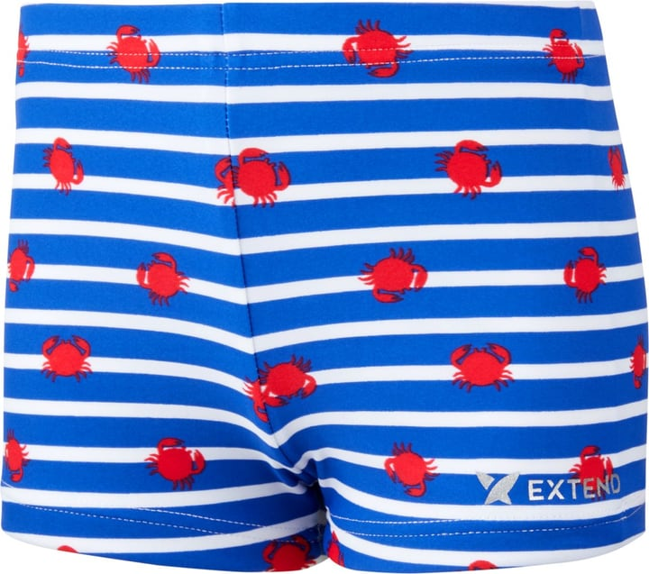 Boxer de bain pour garçon Extend 472351109240 Couleur bleu Taille 92 Photo no. 1