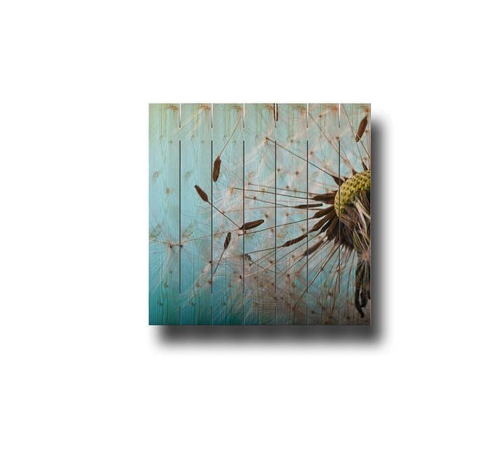 """Image sur lames en bois """"Pusteblume"""" HolzZollhaus 641500800000 Photo no. 1"""