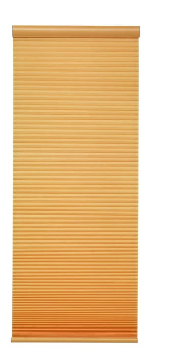 DUO Store plissé 430735508050 Couleur Jaune Dimensions L: 80.0 cm x H: 160.0 cm Photo no. 1